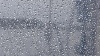 Regen: de hele tocht